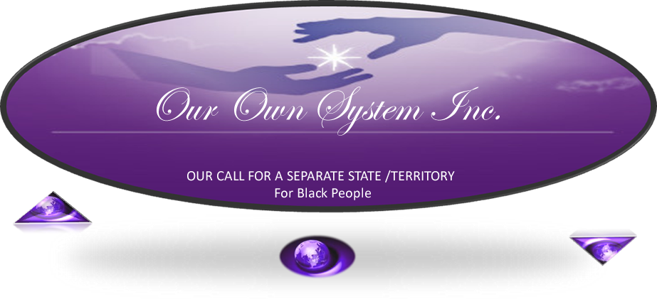 Our Own System Inc Logo